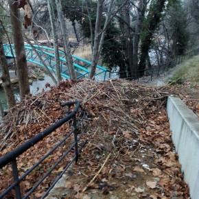 Ciudadanos Bajo Aragón reclama que se lleven a cabo trabajos de limpieza y reparación en el entorno del río Guadalope afectado por la riada
