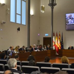 El Pleno de la DPZ insta al Gobierno de Aragón a petición de C's para crear un registro de maltratadores de animales