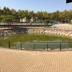 C's Utebo reclama al ayuntamiento que adopte medidas para limpiar el estanque del parque Europa