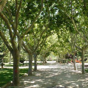 Ciudadanos lamenta que no se haya tenido en cuenta su propuesta de farolas solares para la iluminación del Parque de Los Fueros