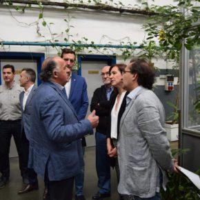 """Sara Fernández """"El empleo y las empresas son los grandes olvidados del PSOE y ZeC"""""""