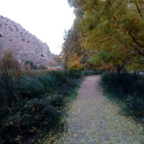 El Ayuntamiento de Jaraba instalará el alumbrado en el paseo a la Ermita con una inversión de 44.000 euros