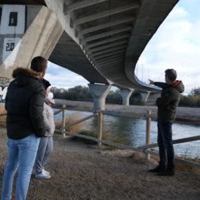 Cs advierte de que la presencia de una gran isla de grava en el Ebro bajo la Z-40 podría causar afecciones en la ribera en caso de riada